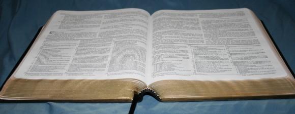 Dake Annotated Reference Bible NKJV 048