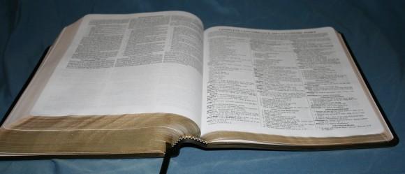 Dake Annotated Reference Bible NKJV 049