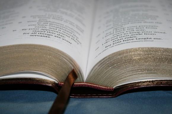 Crossway ESV Large Print Personal Size Bible 024