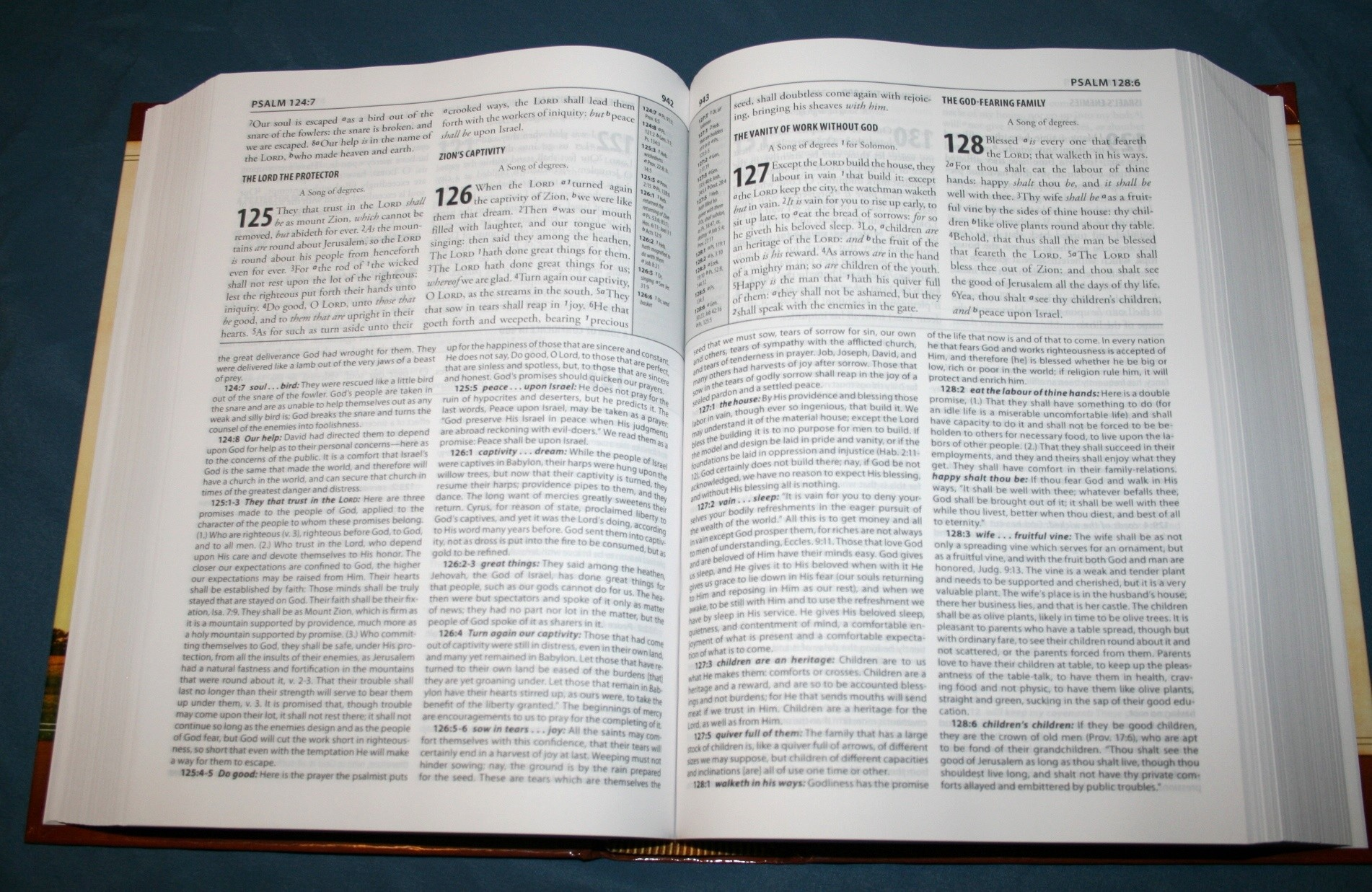 The Matthew Henry Study Bible - Review