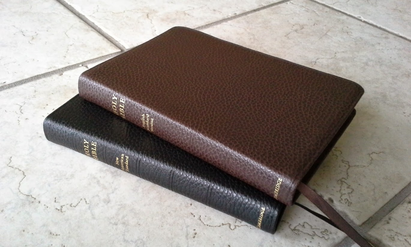 Review Of The Cambridge Pitt Minion Esv Brown And Nasb