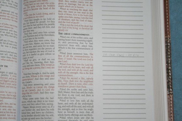 Barbour KJV Journaling Bible (12)