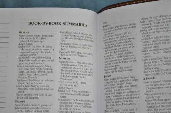 Barbour KJV Journaling Bible (14)