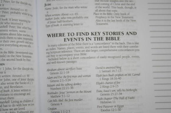 Barbour KJV Journaling Bible (15)