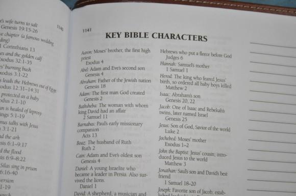 Barbour KJV Journaling Bible (16)