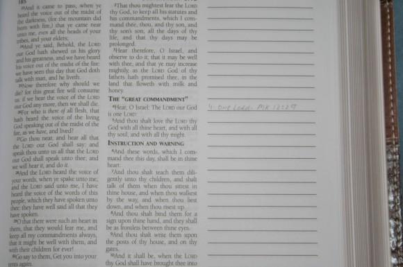Barbour KJV Journaling Bible (8)