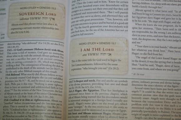 Zondervan First-Century Study Bible (12)
