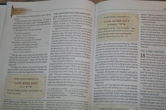 Zondervan First-Century Study Bible (13)