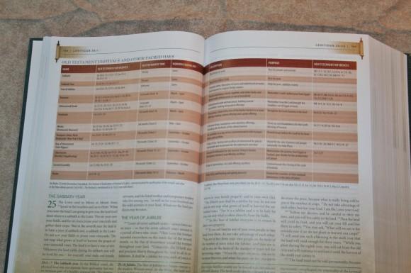 Zondervan First-Century Study Bible (14)