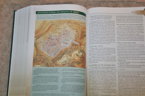 Zondervan First-Century Study Bible (19)