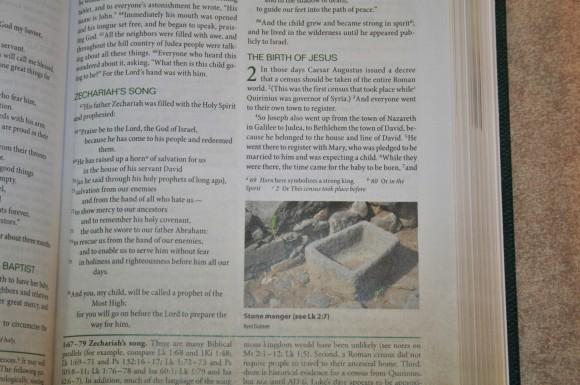 Zondervan First-Century Study Bible (20)