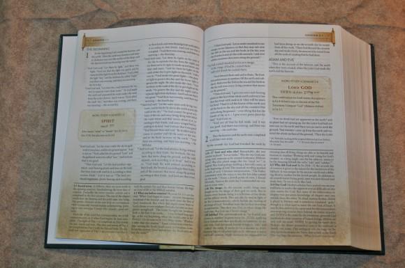 Zondervan First-Century Study Bible (7)