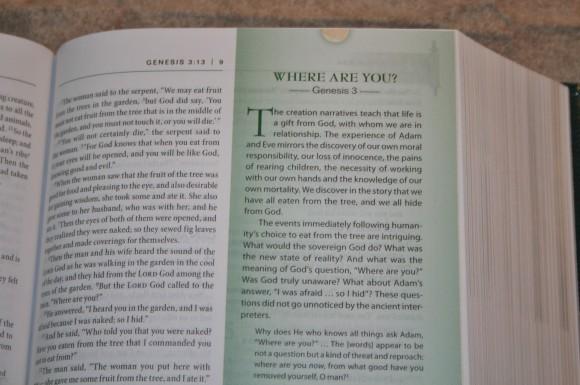 Zondervan First-Century Study Bible (8)