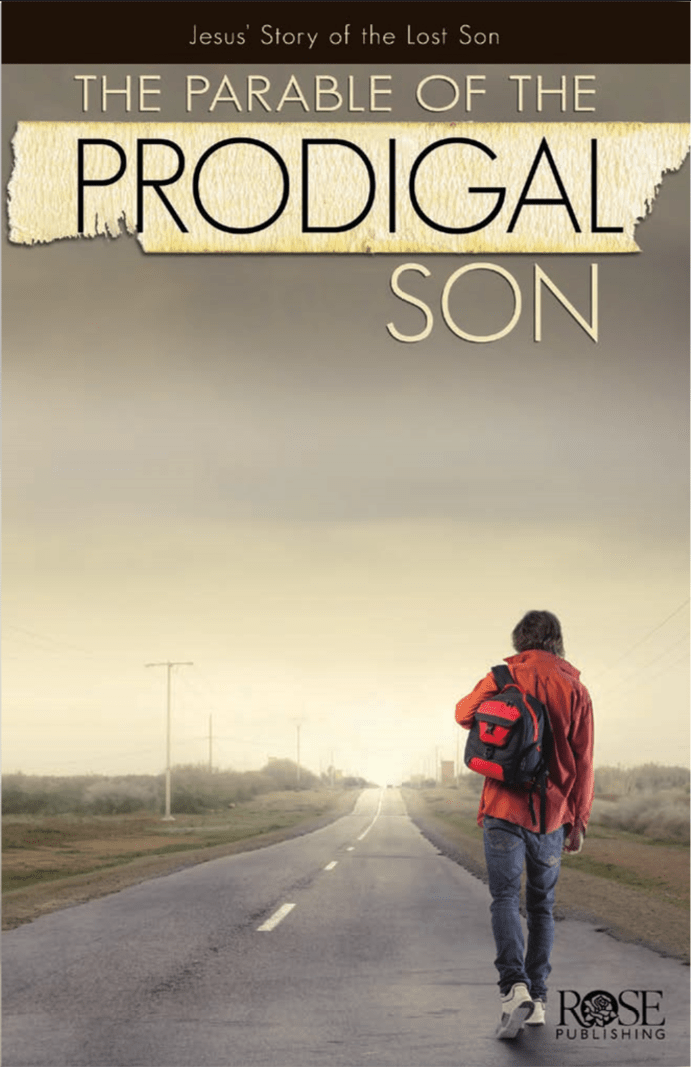 Rose Publishing S The Parable Of The Prodigal Son Bible