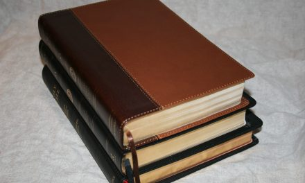 Cambridge and Crossway ESV Wide Margin Bible Comparisons