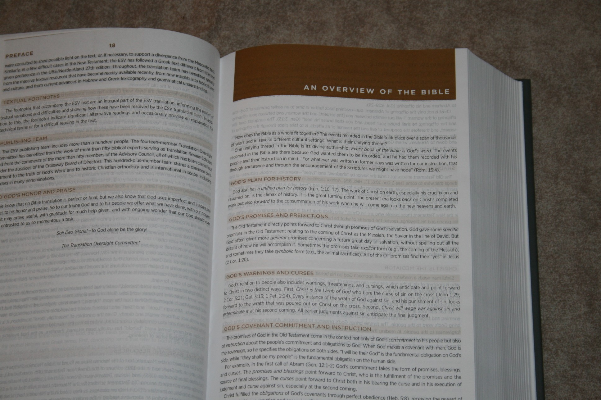 Crossway ESV Student Study Bible Review - Bible Buying Guide