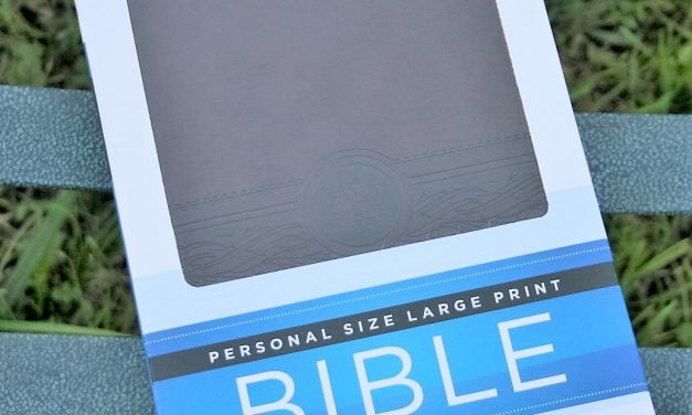 Passio's Personal Size Large Print MEV Bible – Review