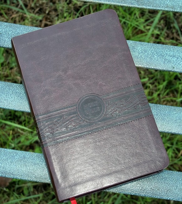 Passio's Personal Size Large Print MEV Bible - Review