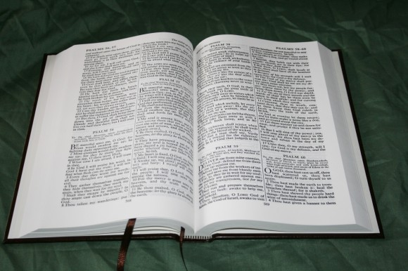 TBS Comfort Text Bible - Review