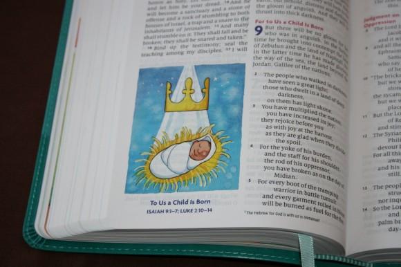 ESV Big Picture Bible (9)
