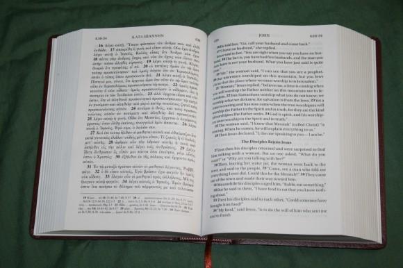 UBS NIV Greek English New Testament (3)