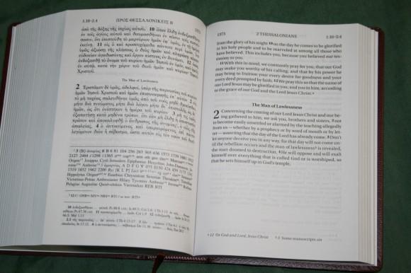 UBS NIV Greek English New Testament (5)