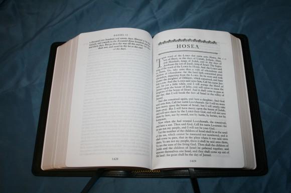 LCBP Paragraph BIble (20)