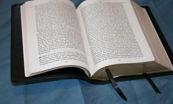 LCBP Paragraph BIble (6)