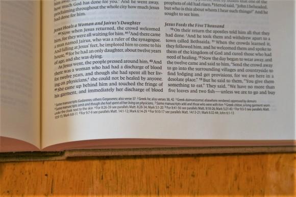 ESV Journaling Bible Interleaved Edition (12)
