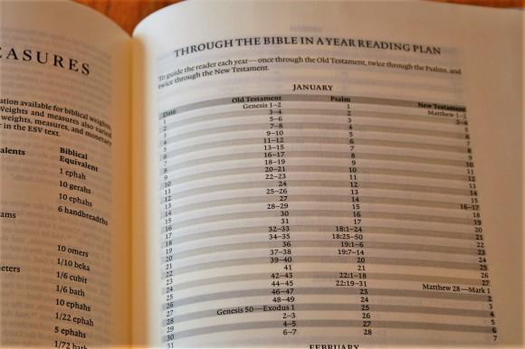 ESV Journaling Bible Interleaved Edition (15)