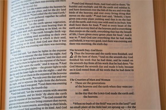 ESV Journaling Bible Interleaved Edition (4)