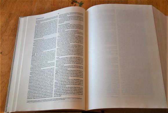 ESV Journaling Bible Interleaved Edition (7)