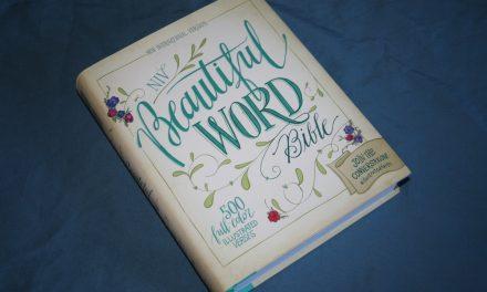 NIV Beautiful Word Bible Review