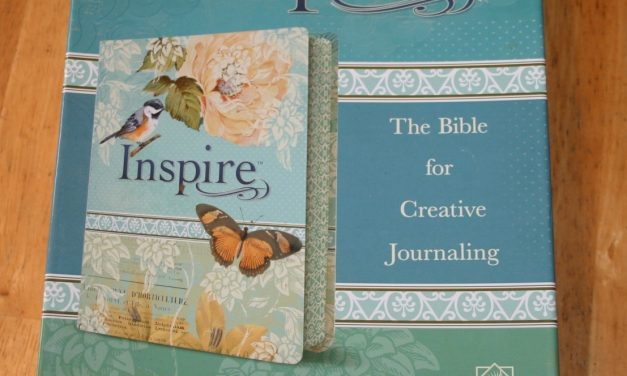 NLT Inspire Bible Review