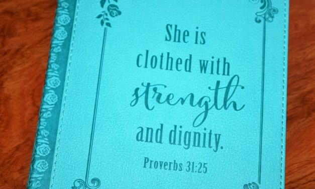 Strength and Dignity Flexcover Journal Review