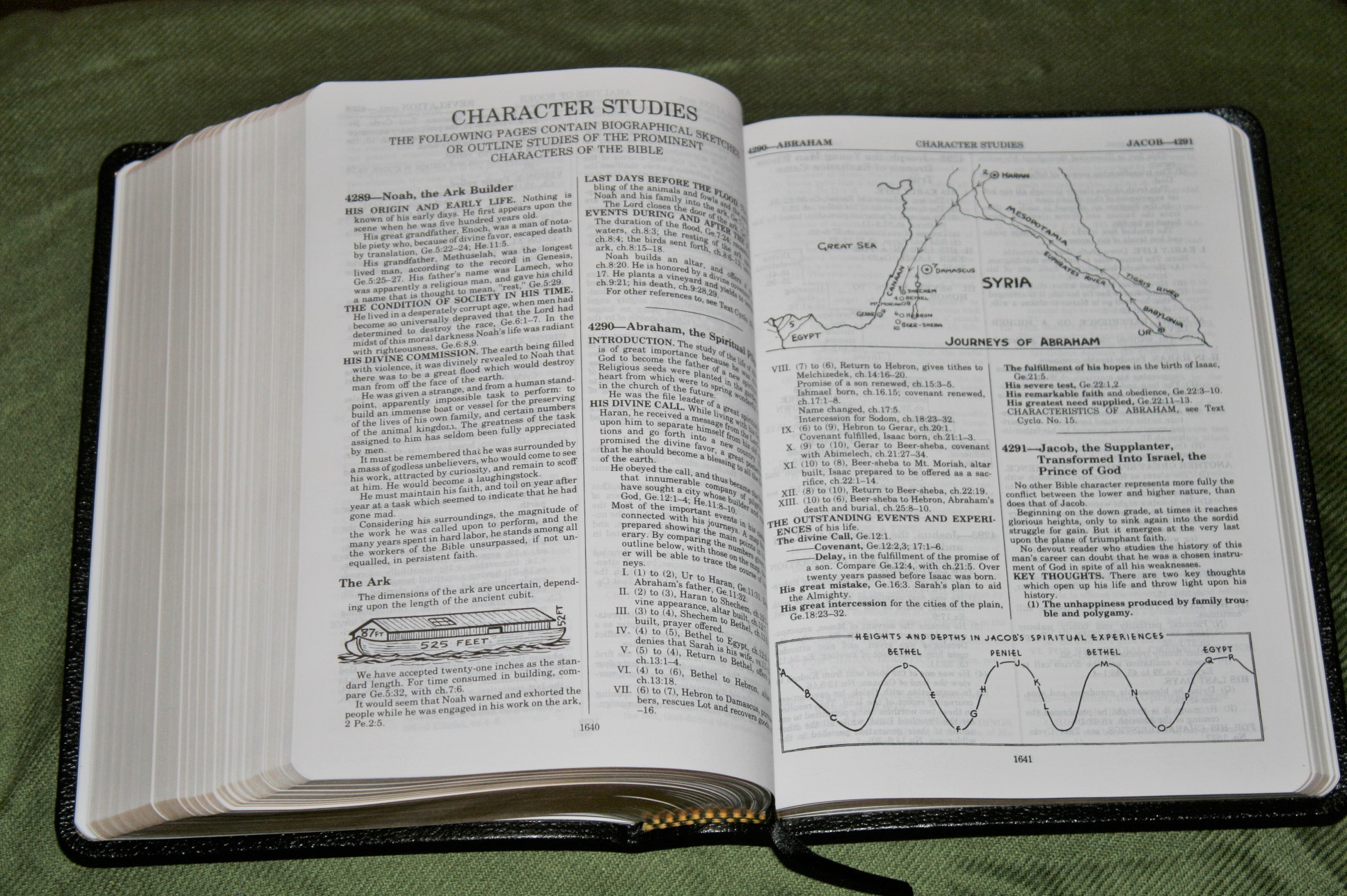 Handy Size Thompson Chain Reference Bible KJV (15)