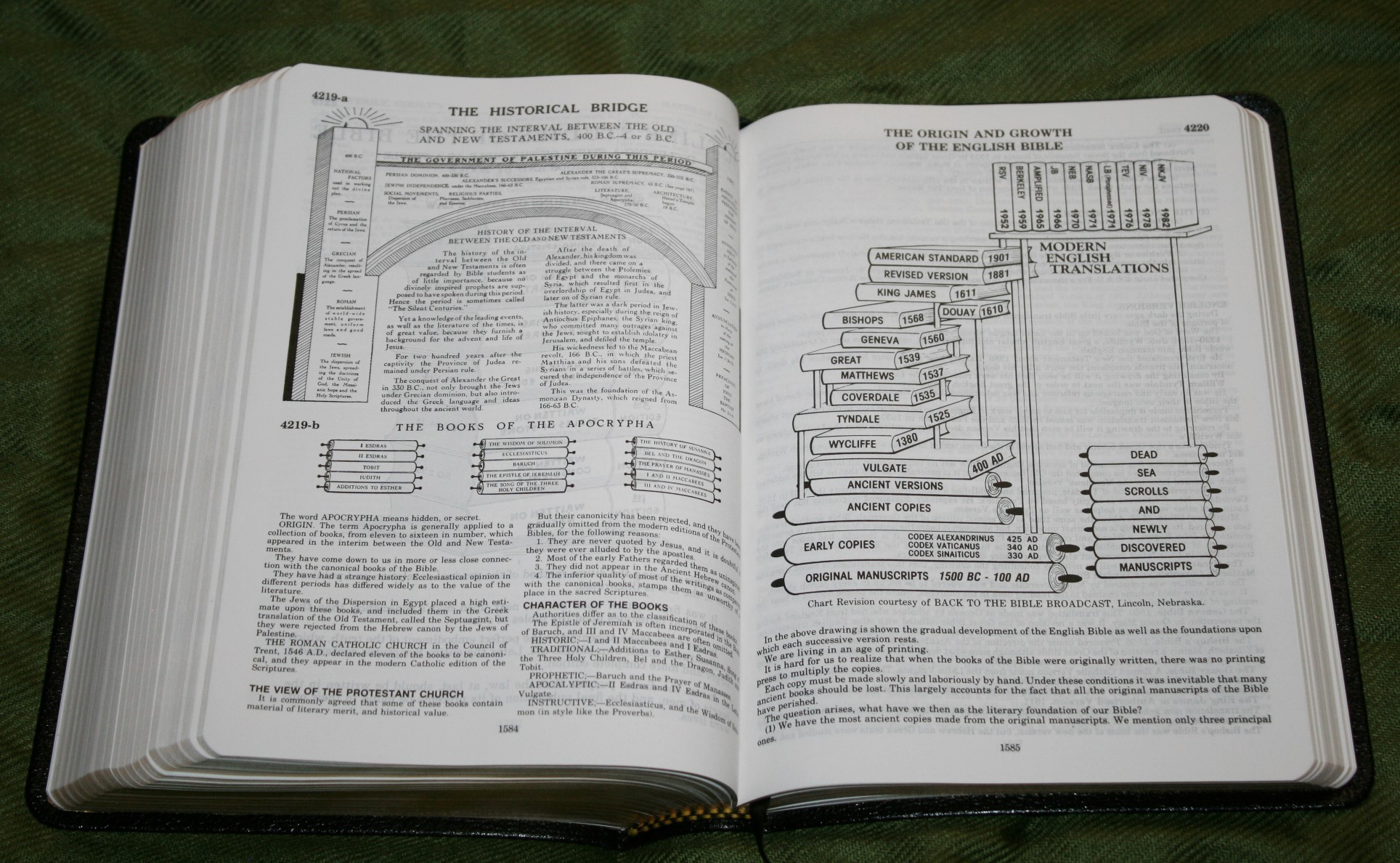 Handy Size Thompson Chain Reference Bible KJV (164)