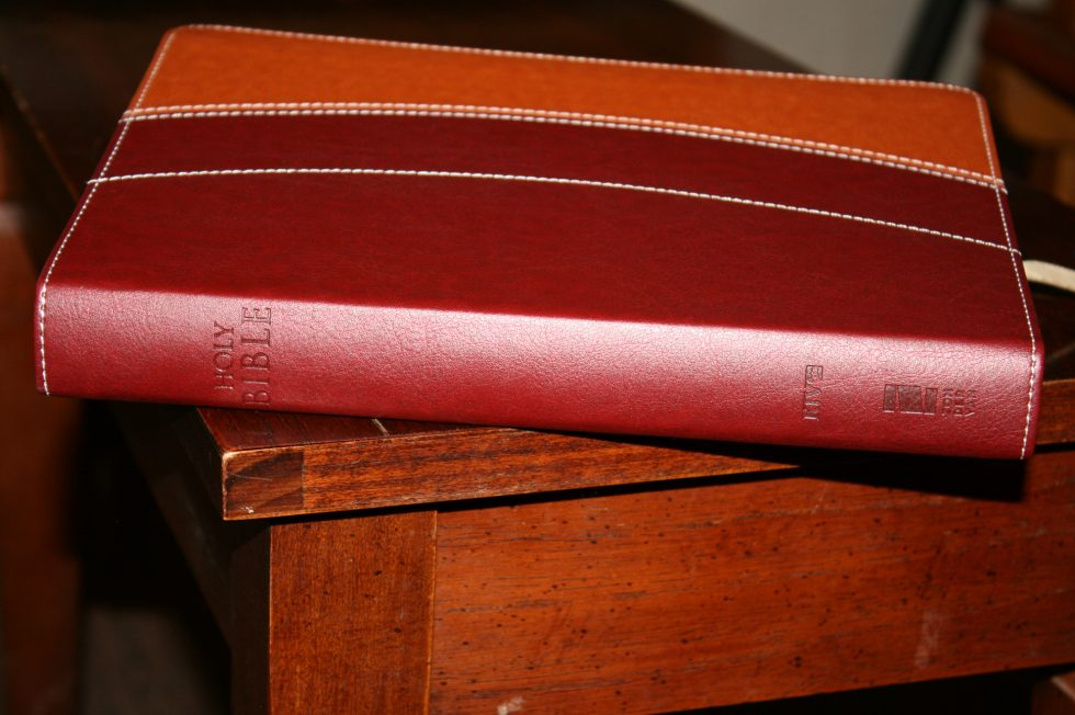 Zondervan Thinline Large Print KJV (15)