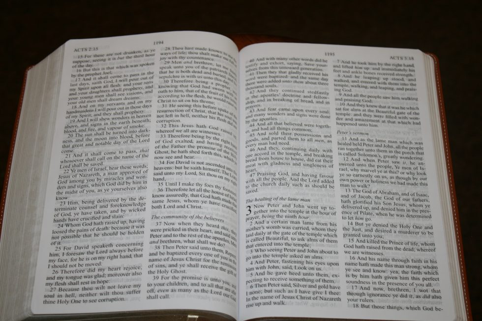 Zondervan Thinline Large Print KJV (77)