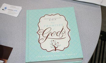 MEV Journaling Bible