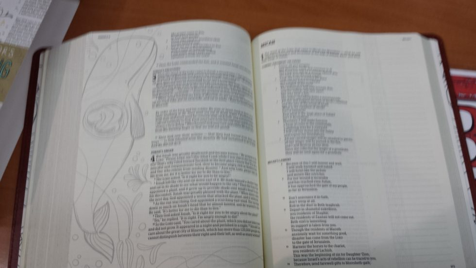 Holman Illustrators Notetaking Bible (4)