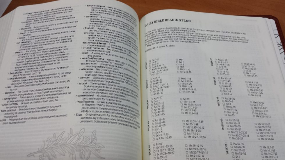 Holman Illustrators Notetaking Bible (7)