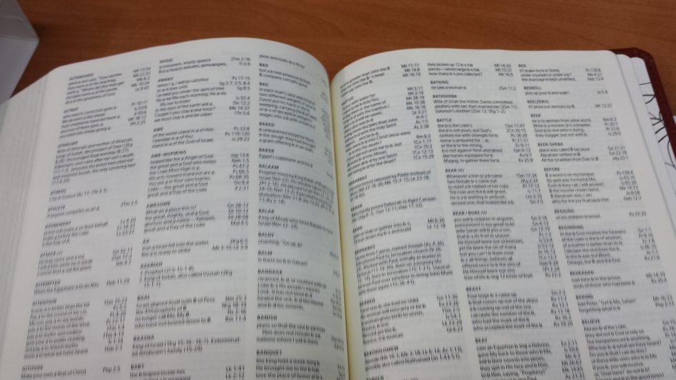 Holman Illustrators Notetaking Bible (8)