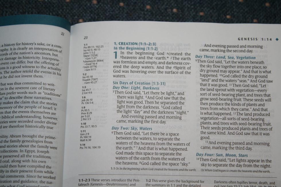 NLT Illustrated Study Bible (13)