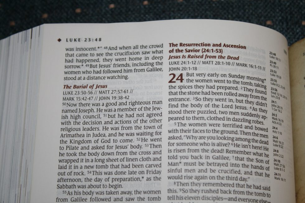 NLT Illustrated Study Bible (27)