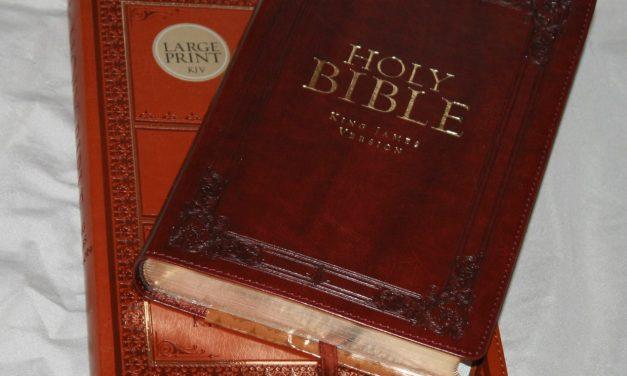 Christian Arts Publishers Regular and Large Print KJVs