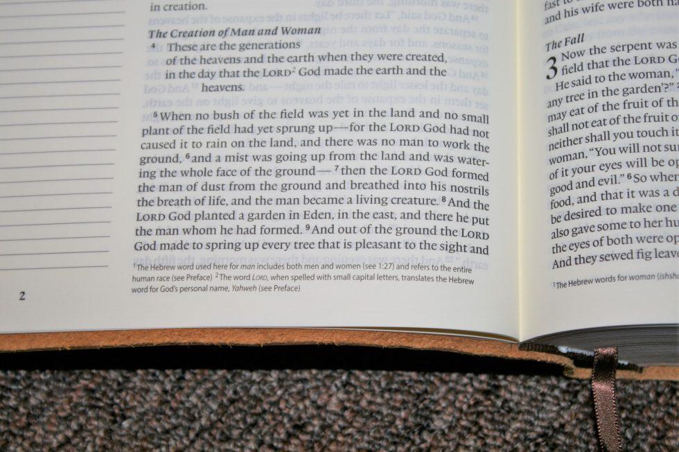 ESV Single Column Journaling Bible Large Print Edition (20)