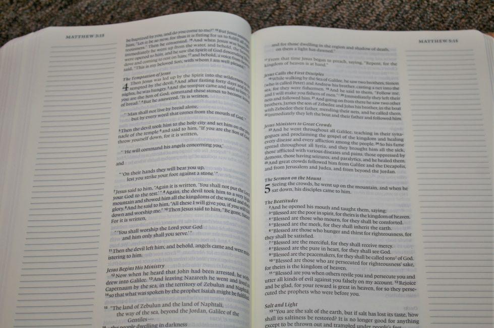 ESV Single Column Journaling Bible Large Print Edition (24)