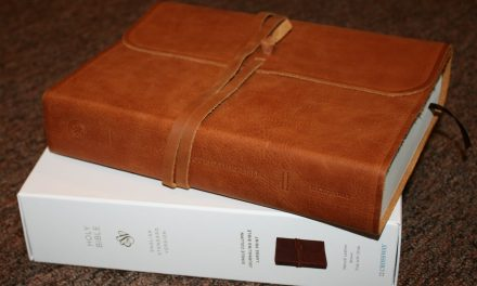 ESV Single Column Journaling Bible Large Print Edition – Review