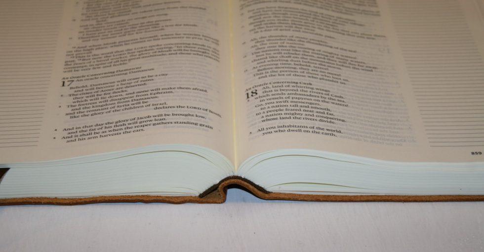 ESV Single Column Journaling Bible Large Print Edition (33)